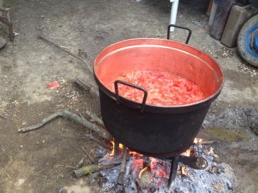 At the cooking station, get your big copper cooking pot over the fire and add the prepared tomato pieces. Leave it to cook whilst you have a coffee break - its ready when the tomato juices have been released and the flesh has broken down.