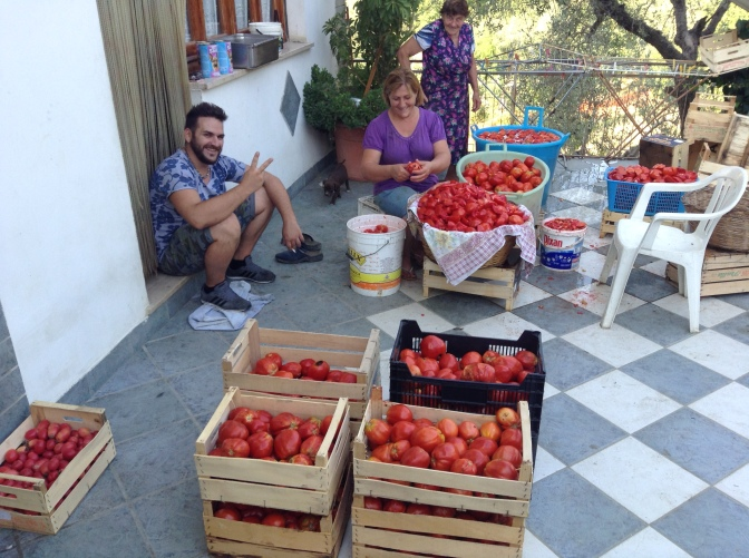 Collect all your super ripe tomatoes, make sure your bottles are clean and get the family together. Find all your big pots and pans, set up some work stations, get a fire going.
