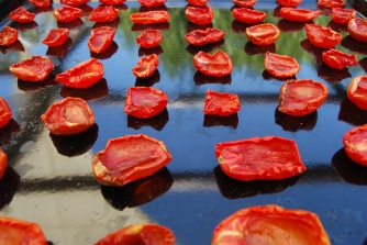 Put your tomato halves on an oven tray with space in between each piece. Sprinkle the tomatoes with the dried herbs if you are using them. Put in direct sunlight and leave to dry - how long this takes depends on how much sunshine you have, at the moment ours take about 2 days.